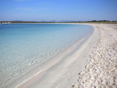 spiaggia di espalmador