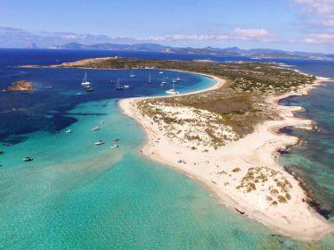 Espalmador island