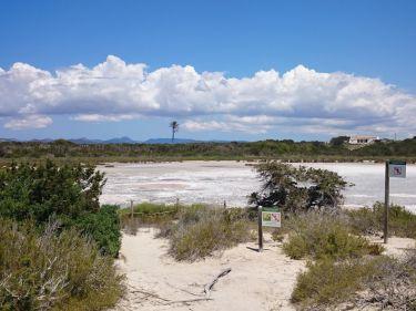Espalmador muds
