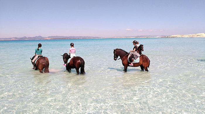 formentera a cavallo